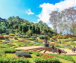 Nem só de prédios viverá o homem: confira 7 vantagens do paisagismo