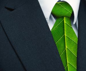 3 detalhes importantes entre empresa e meio ambiente
