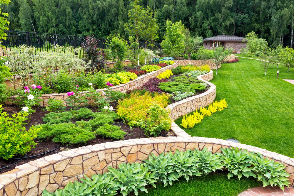 Curiosidades sobre jardins residenciais