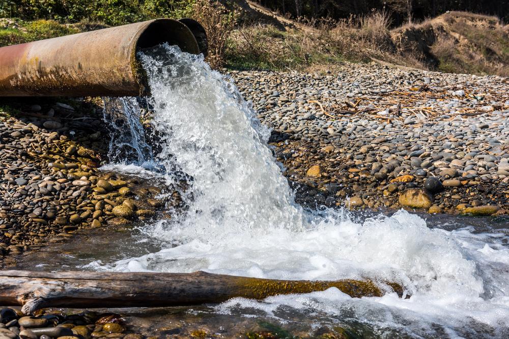 3 dicas relacionadas ao meio ambiente