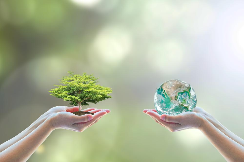Cuidar do meio ambiente para conseguir um futuro melhor