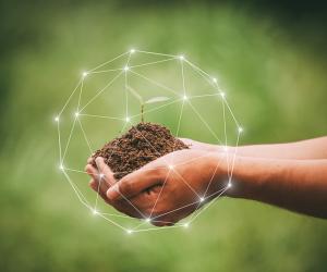 Saiba mais sobre consultoria ambiental