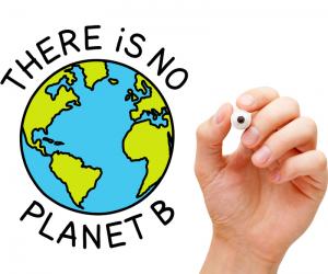 Definições e benefícios do gerenciamento de ativos ambientais
