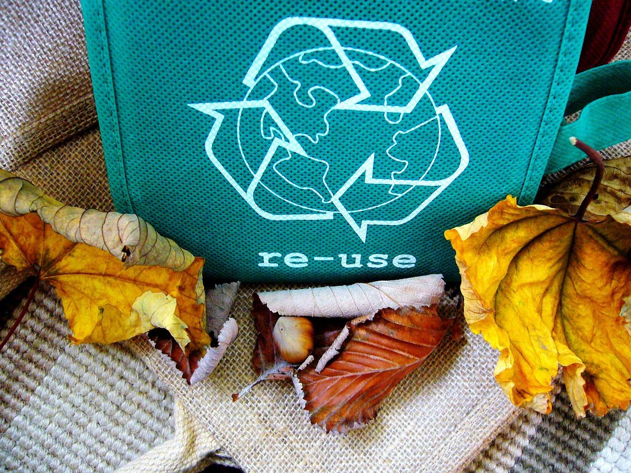 A importância da reciclagem para o planeta