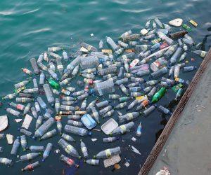 Contaminação ambiental: como evitar?