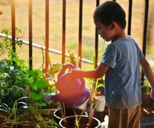Educação Ambiental: o que é