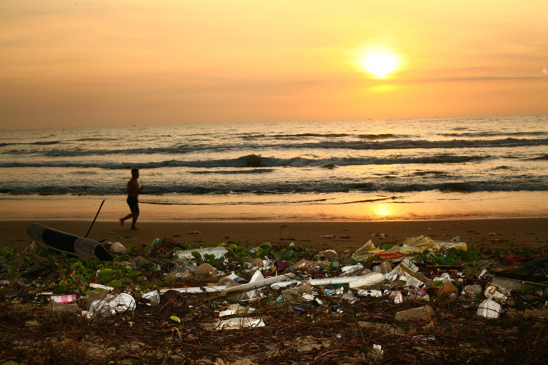 Reaproveitamento de resíduos sólidos transforma meio ambiente