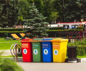 Como preparar o lixo caseiro para a coleta seletiva?
