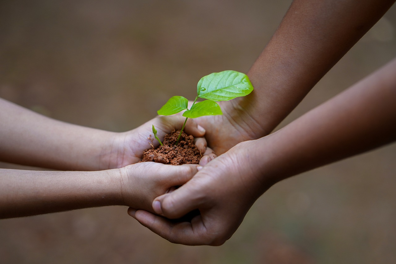 Quais os cuidados com o meio ambiente podem acabar com futuras pandemias?