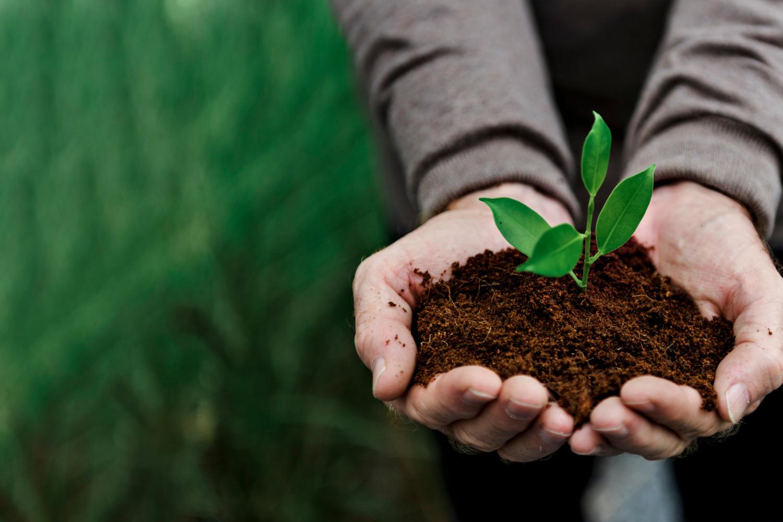 Saiba o que fazer para cuidar do planeta