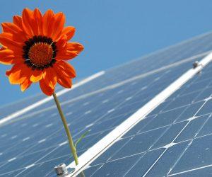 Sustentabilidade: conheça o sistema fotovoltaico, uma solução em energia limpa