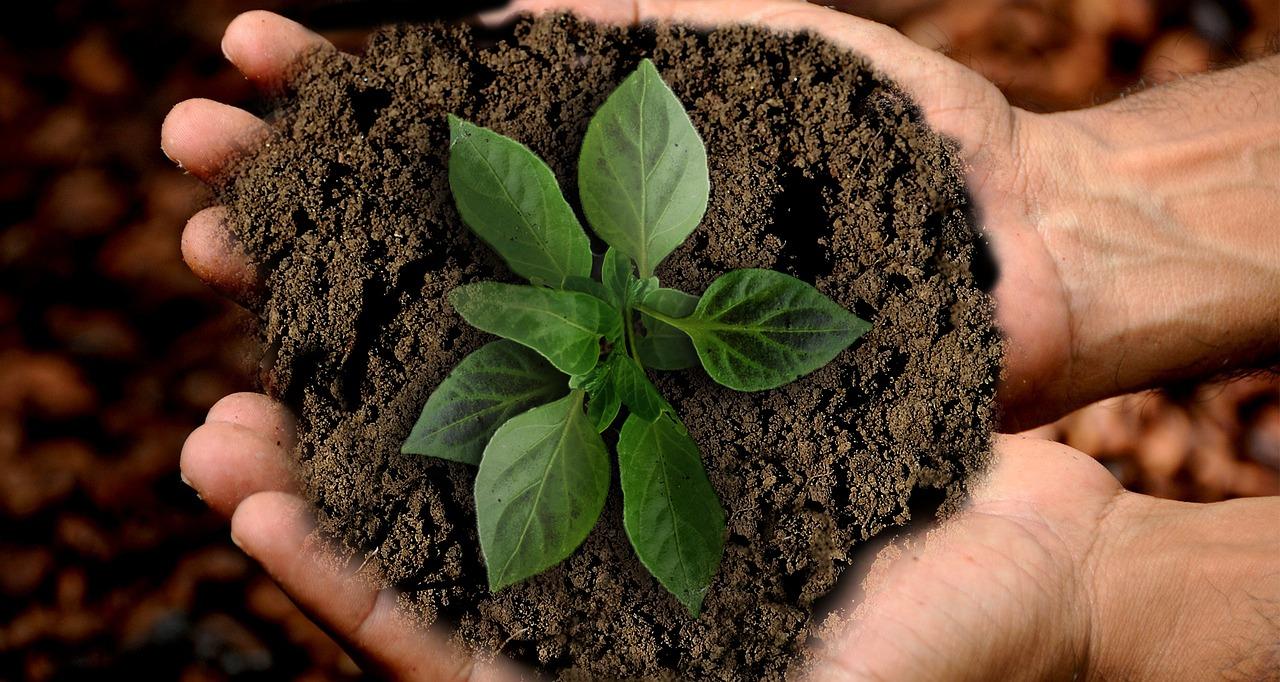 Sustentabilidade: importância da correta destinação de resíduos