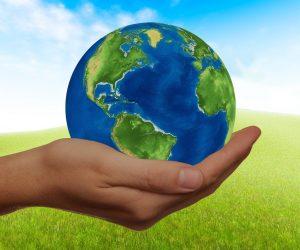 Sustentabilidade: saiba como inserir em sua empresa