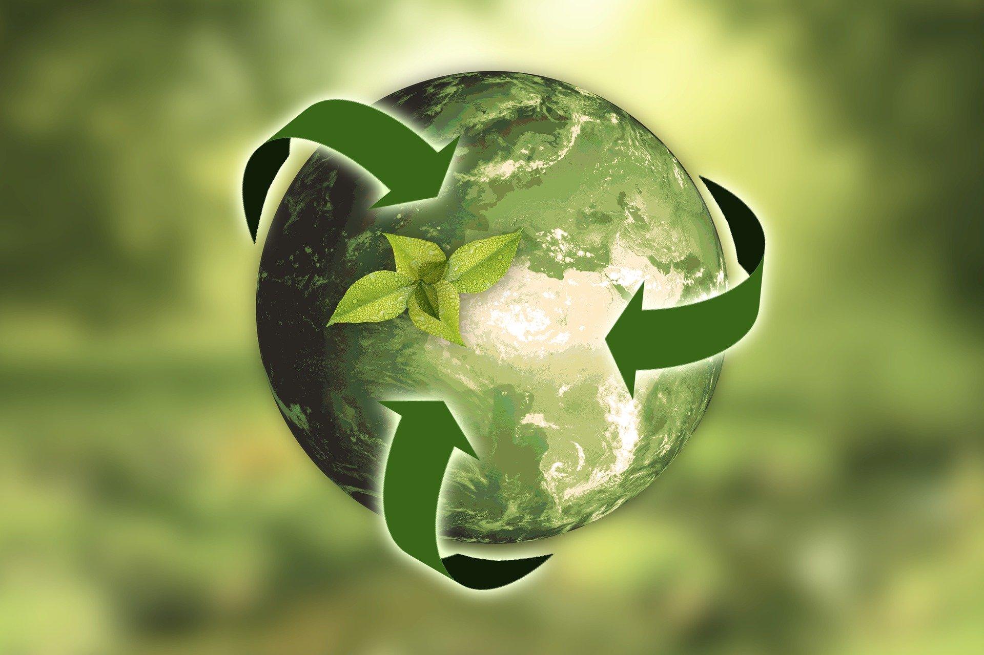Meio ambiente: cuidados que as empresas devem ter