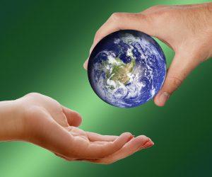 Saiba a importância das ações ambientais a uma empresa