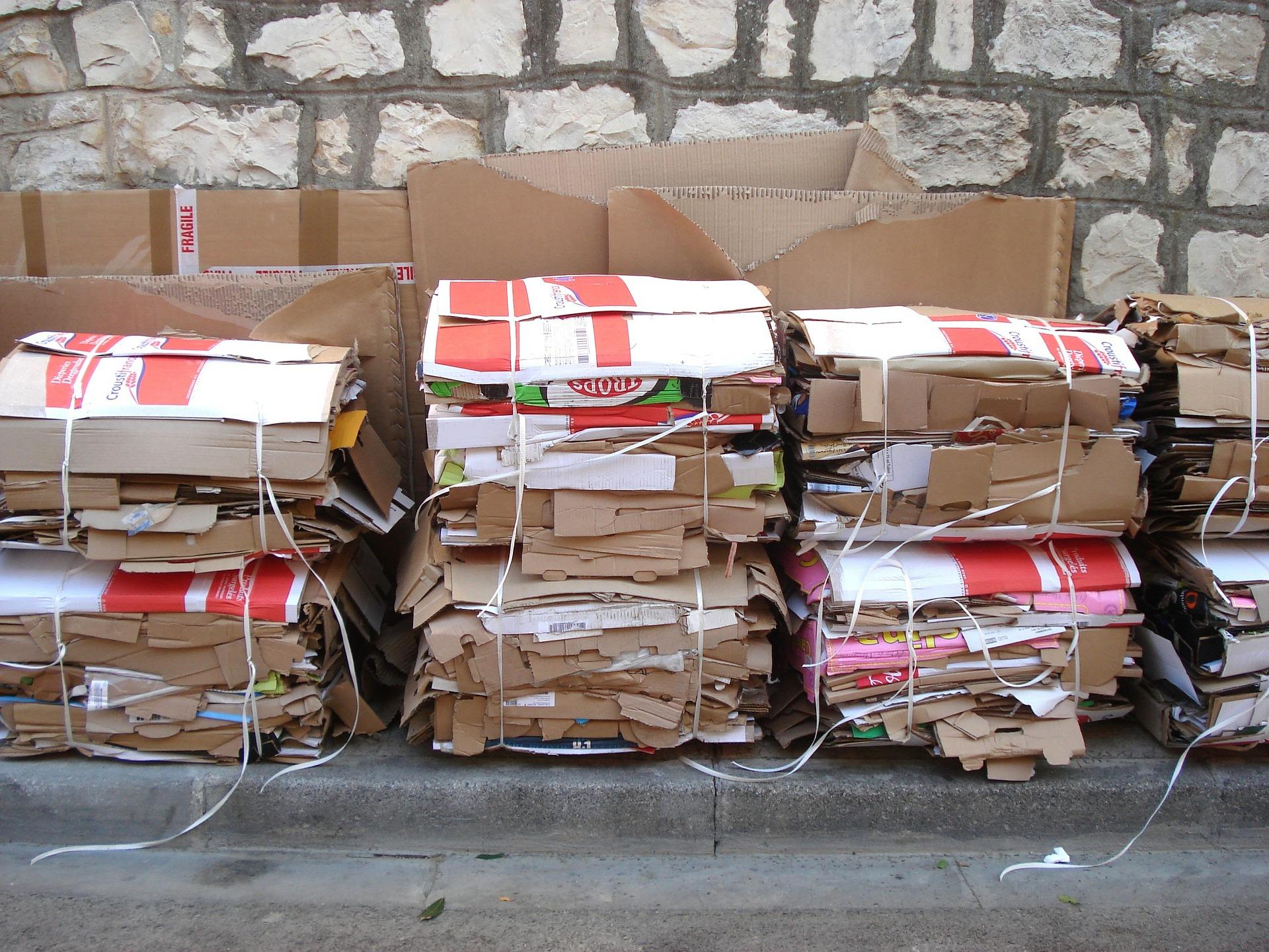 A preservação ambiental por meio da reciclagem