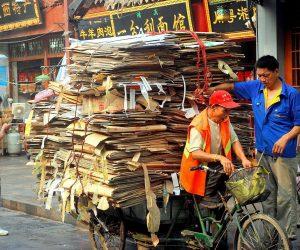 Trabalhos e processos que ajudam na preservação ambiental