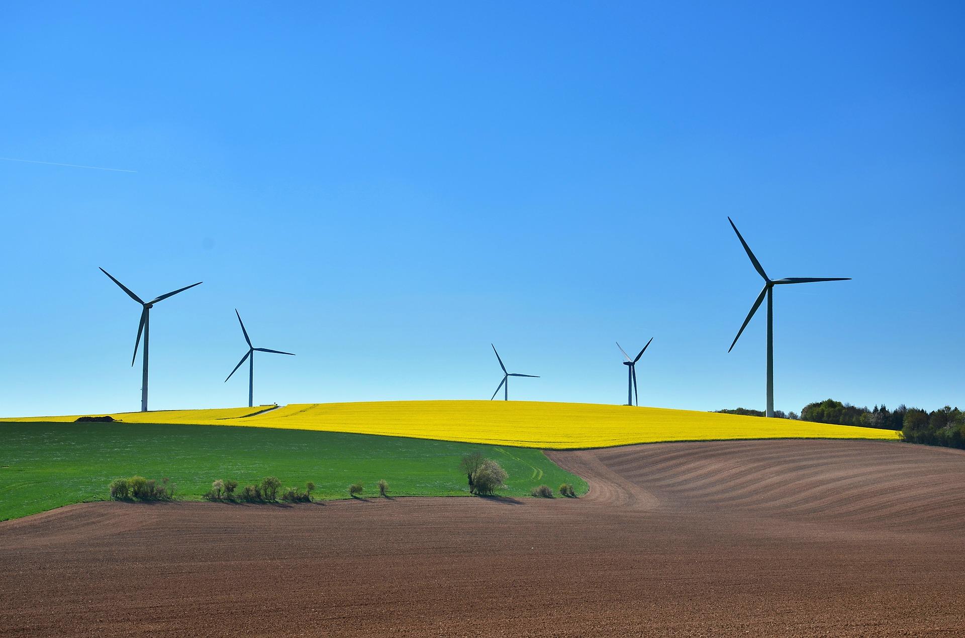 O desenvolvimento sustentável e seus aspectos
