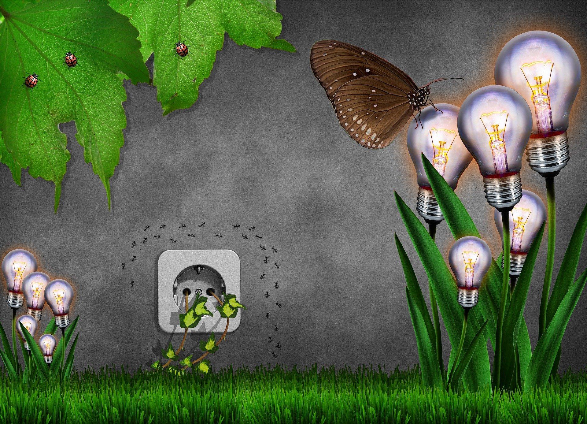 Meio ambiente: ideias para aprimorar ações