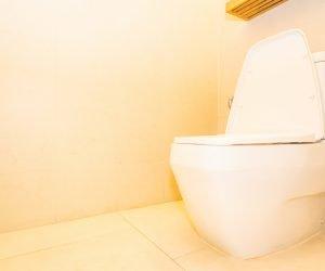Como desentupir o vaso sanitário rápido e fácil?